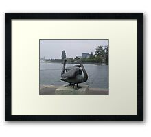 The swans of Zug Framed Print