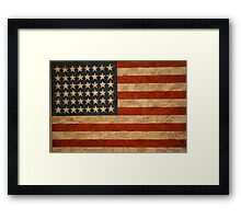 American Flag by Jasper Johns Framed Print