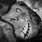 Granite Grin by Bob Larson