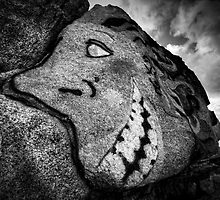 Granite Grin by Bob Larson