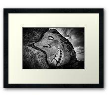 Granite Grin Framed Print