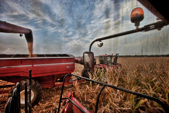 View from the Cab by Steve Baird