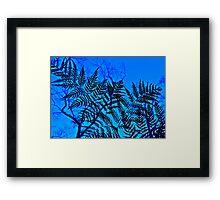 Fern Fantasia Framed Print