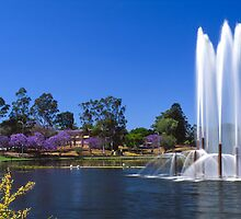 UQ Lakes by Martin Canning