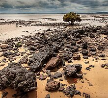 Low tide - Tenby Point by Hans Kawitzki