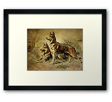 Vintage German Shepards Framed Print
