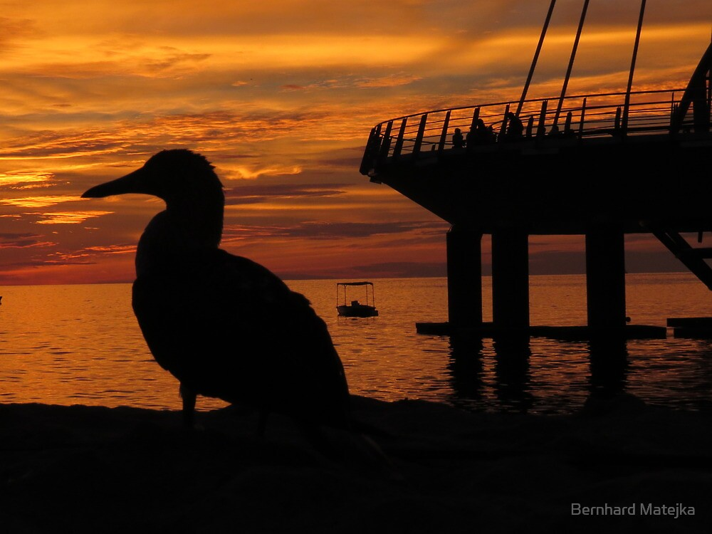 sunset: nature and men - puesta del sol: naturaleza y humanos by Bernhard Matejka