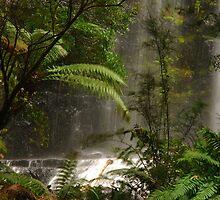 Russel Falls by Imi Koetz