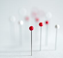 Pins on a white background by Luigi Masella