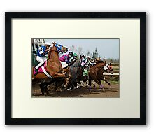 Thoroughbred Racehorse Opening The Gate Framed Print