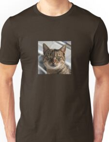 Beautiful Eyed Tabby Cat Unisex T-Shirt