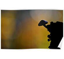 Brick cap Silhouette  Poster