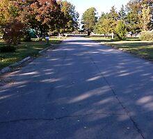 My Street by WildestArt