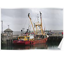 Visitor to Padstow Harbour Poster