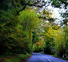On The Road Again by lynn carter