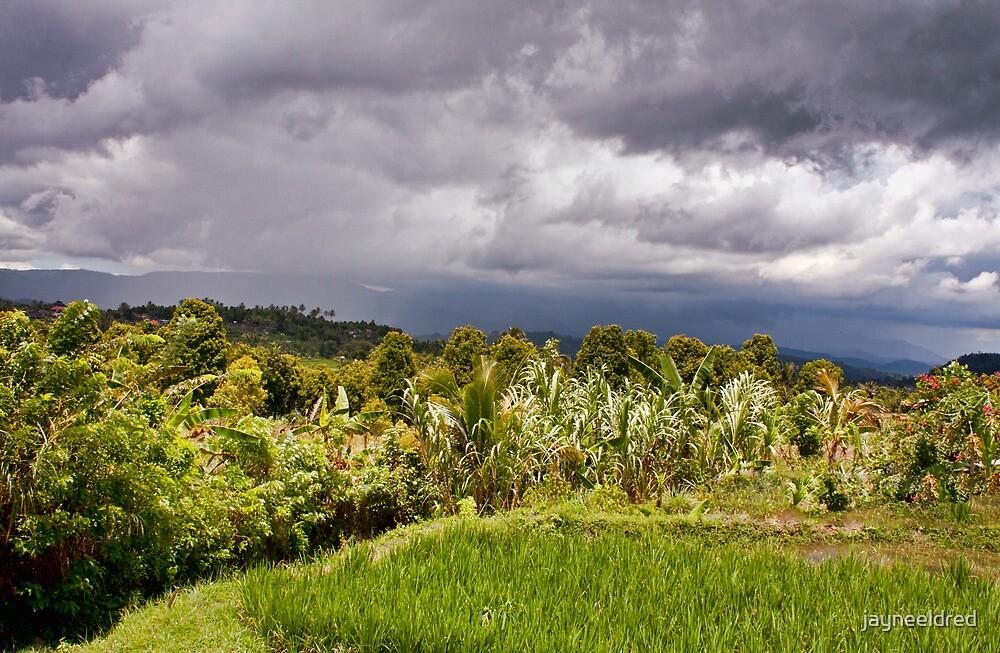 Stormy Banyuatis, Bali by jayneeldred