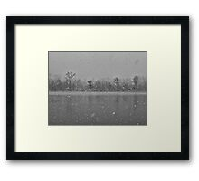 Heavy snowfall and two flying ducks Framed Print
