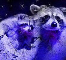 Dream Raccoon2 by jkartlife