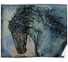 Friesian Stallion Poster