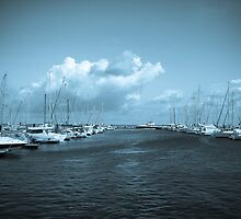 Yacht club  by Aaron  Fleming