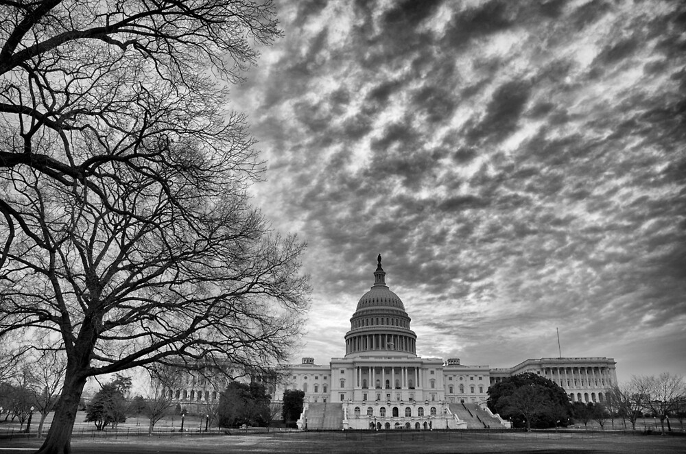 Capitol Hill by Lynn Armstrong
