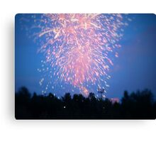Fourth of July Canvas Print