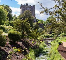 Blarney Castle by MichaelSnook