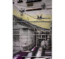 Nook Photographic Print