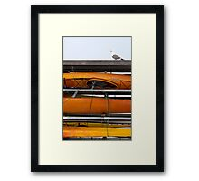 Seagull and Kayaks at AT&T Park San Francisco Framed Print