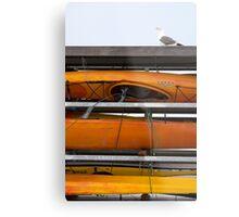 Seagull and Kayaks at AT&T Park San Francisco Metal Print