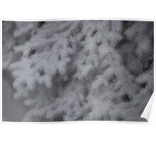 Ice Fog Poster