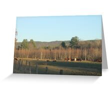 Mooing and grazing, grazing and mooing Greeting Card
