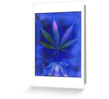 Hemp Lumen #2  Marijuana, Cannabis Greeting Card