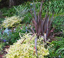 Green Garden by Donna Grayson