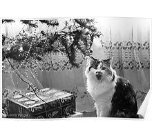 Singing Christmas Carols Poster