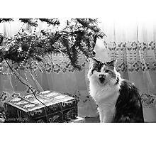 Singing Christmas Carols Photographic Print