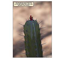 Jack's View Photographic Print