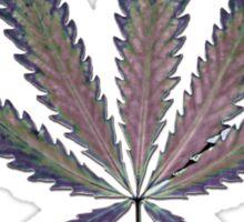 Hemp Lumen #7   Marijuana, Cannabis Sticker