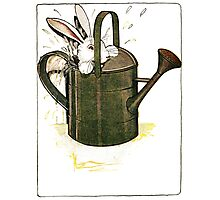 Peter Rabbit in Watering Can Photographic Print