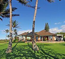 Patty Sadler Realtor - Maui Foreclosures by Patty723