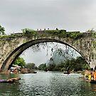 The dragon bridge  by Robyn Lakeman