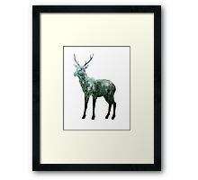 Deer - Alaskan Animal Series Framed Print