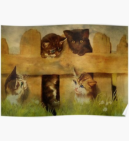Kittens at the Fence Poster