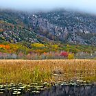 Champlain Mountain area in fall, Acadia NP, Maine by Dan Hatch