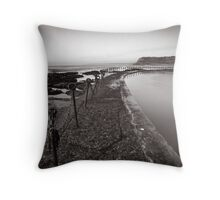 Newcastle Beach - B&W Throw Pillow