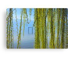Natural curtain @ Lake Kerkini Canvas Print