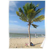 Pasikudah Beach, Batticaloa, Sri Lanka Poster