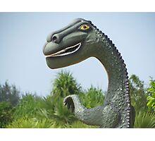 Eco Dinosaur, Batticaloa, Sri Lanka Photographic Print