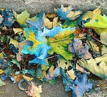 Autumn Harlequin by RC deWinter