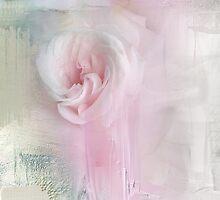 Wedding Rose Nb 2 by Anivad - Davina Nicholas